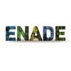 Logo ENADE